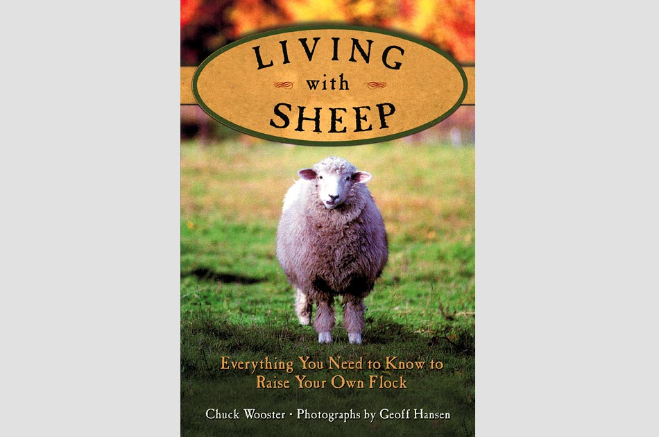 living-with-sheep-chuck-wooster-geoff-hansen