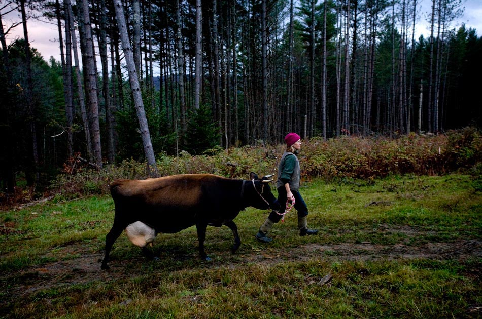 lisa-mccrory-earthwise-farm-raw-milk-bethel-vt-valley-news